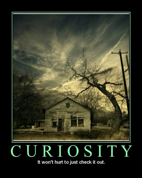 """Curiosity killed the cat, the cleric, the ranger, the warrior, the wizard…"" Kuva: Vulcan Stev's Database"